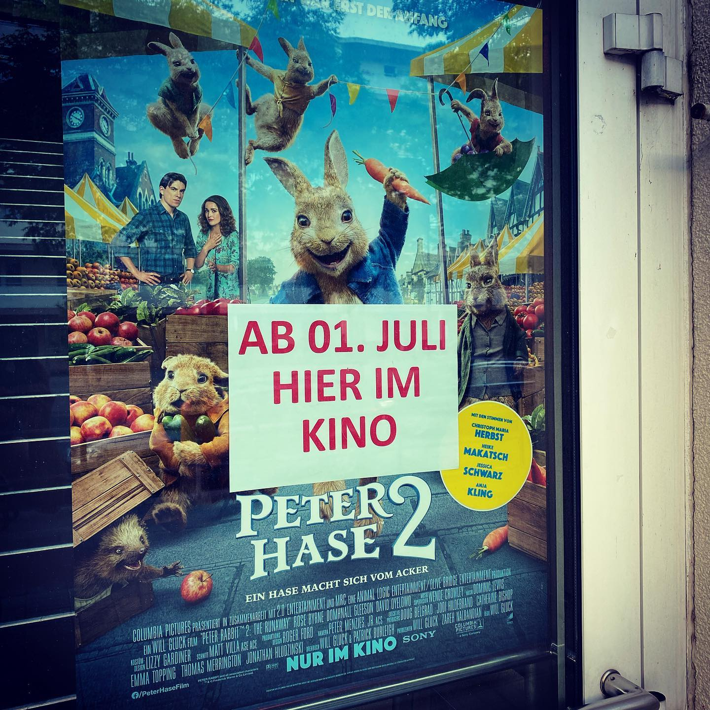 Peter Hase 2